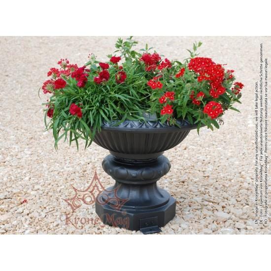 Cast Iron Flower Pot 86
